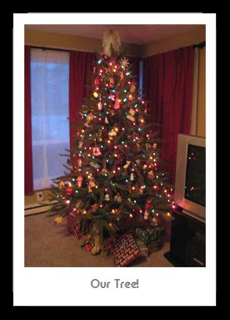 Christmas 2010 Recap